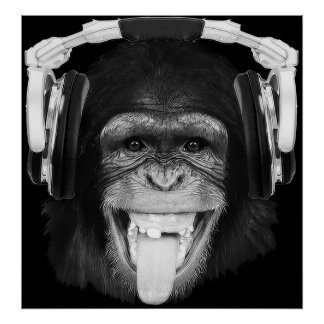 DJ Monkey Poster