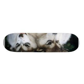 Dog Puppy Board Custom Skateboard