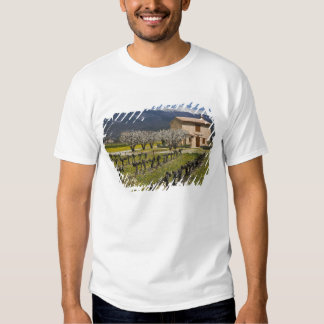 Dormant vineyard, fruit blossoms, stone house, t-shirts