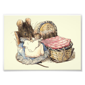 Dormouse Mother and Child Photo Art