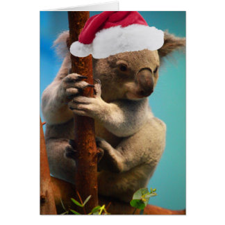 Down Under Christmas Koala Greeting Card