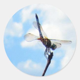 Dragonfly ~ Prepare for Take-off Round Sticker
