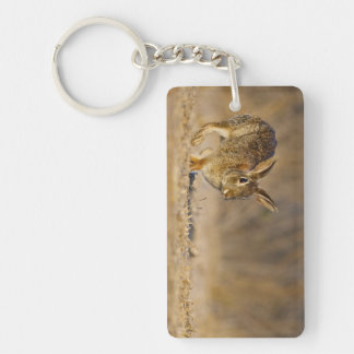 Eastern cottontail rabbit hopping Double-Sided rectangular acrylic key ring