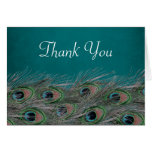 Elegant Peacock Feathers Thank You Note Card