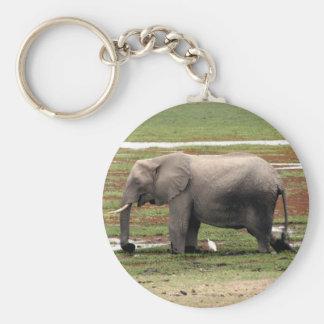 elephant water basic round button key ring