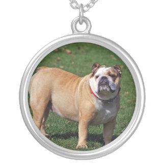 English bulldog necklace, gift idea round pendant necklace