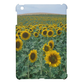 EU, France, Provence, Sunflower field Case For The iPad Mini