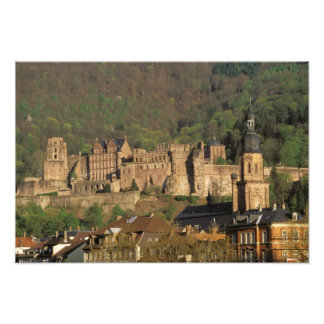Europe, Germany, Heidelberg. Castle Art Photo