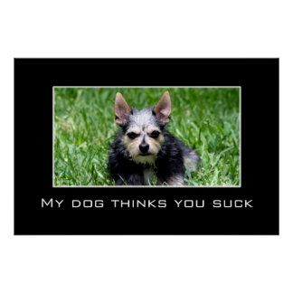 Even my dog knows you suck [XL] Poster