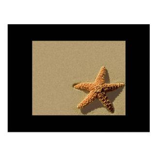 Evento estrellas de mar tropical y la invitación d postcard
