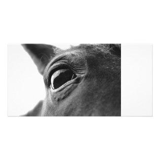 Eye of pony 1 customised photo card