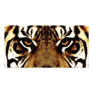 Eyes of a Tiger Photo Greeting Card