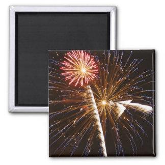 Fireworks display on Savannah River 2 Square Magnet