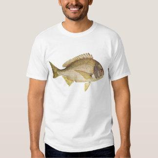 Fish - Black Bream - Mylio australis Tees