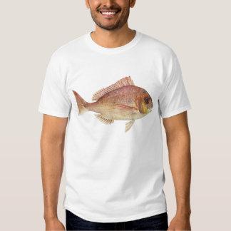 Fish - Red Bream - Chryosophrys guttuatus T Shirt