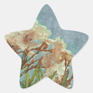 Floral Grunge Vintage Photo Star Sticker