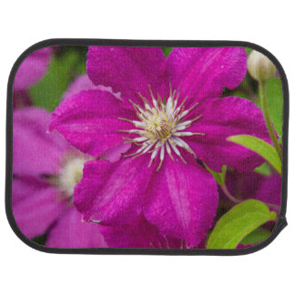 Flowers at Robinette's Apple Haus and Gift Barn 2 Car Mat