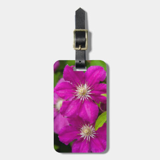 Flowers at Robinette's Apple Haus and Gift Barn 2 Tags For Bags