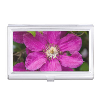 Flowers At Robinette's Apple Haus & Gift Barn Business Card Holders