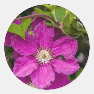 Flowers At Robinette's Apple Haus & Gift Barn Round Sticker
