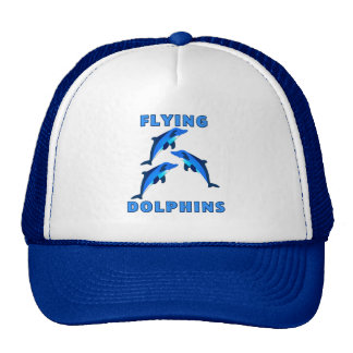 Flying Dolphins Cap
