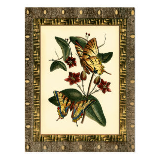 Framed Painting of Butterflies and Flowers Postcard