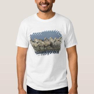 France, Camargue. Horses run through the estuary 5 Tee Shirt