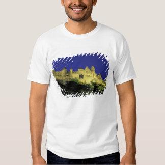 FRANCE, Languedoc Carcassonne T Shirt