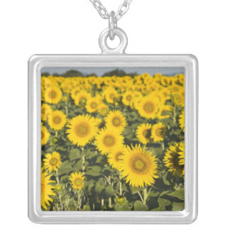 France, Provence, Valensole. Field of Square Pendant Necklace