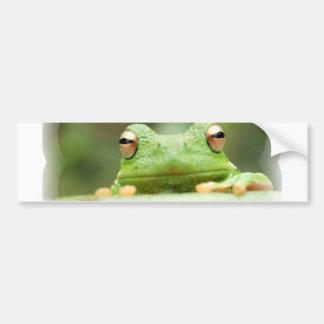 Frog Eyes Bumper Sticker