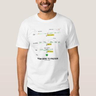 From Gene To Protein (Molecular Biology) Tee Shirt