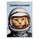 Funny 43rd Birthday Greeting Greeting Card