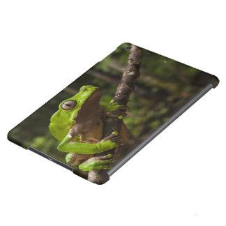 Giant leaf frog Phyllomedusa bicolor) iPad Air Cover