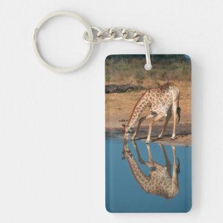 Giraffe (Giraffa Camelopardalis) Drinking Double-Sided Rectangular Acrylic Key Ring
