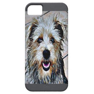 Glen of Imaal Terrier Pop Art iPhone 5 Cover