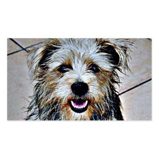 Glen of Imaal Terrier Pop Art Pack Of Standard Business Cards