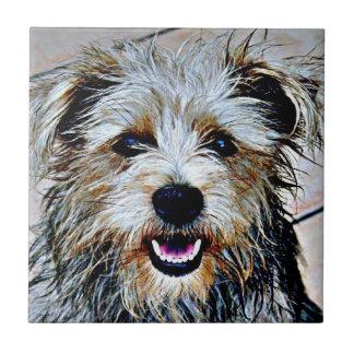 Glen of Imaal Terrier Pop Art Small Square Tile