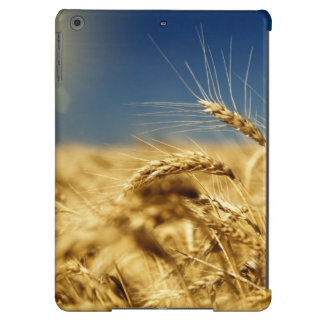 Gold wheat and blue sky with sun iPad air cases