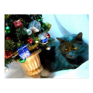 Gray Christmas Kitty V Postcard