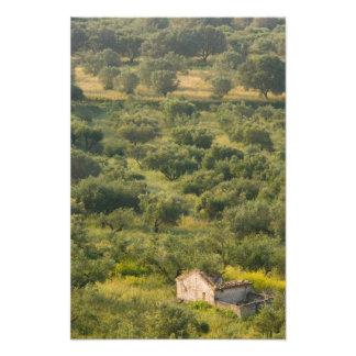 GREECE, Ionian Islands, KEFALONIA, Havriata: Photo Print