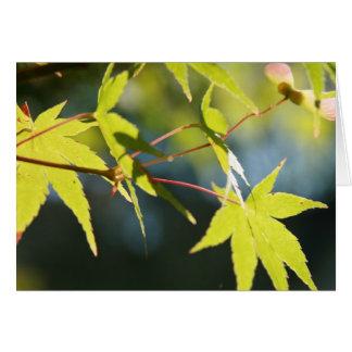 Green Leaf Note Card