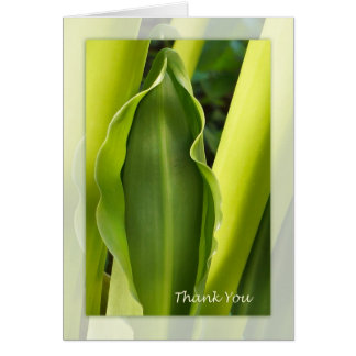 Green Leaf Thank You Note Card