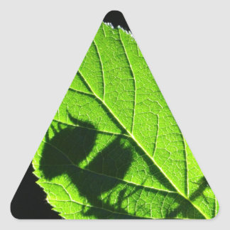 Green leaf with cool shadow triangle sticker