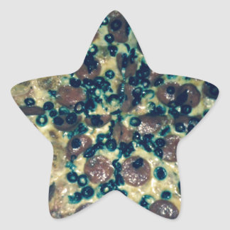Grunge pizza apparel and items star sticker