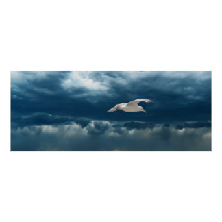 Gull in a Storm Poster