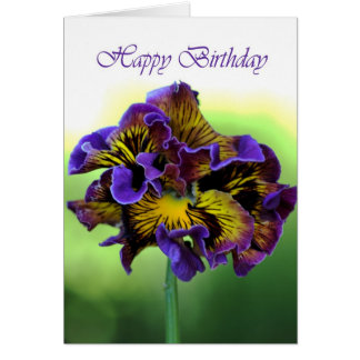 Happy Birthday - Frilly Pansy Flower Greeting Card