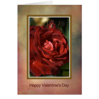 Happy Valentine's Day - Red Rose Greeting Card