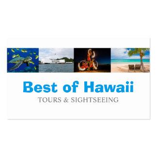 Hawaii Tourist Coordinator Travel Agent Pack Of Standard Business Cards