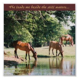 He leads me beside the still waters ... poster