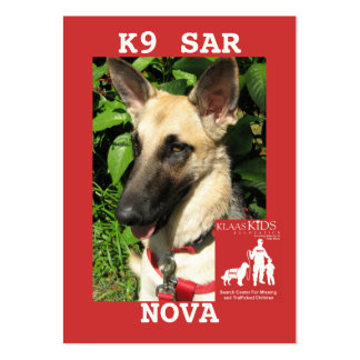 head-NOVA, KlassKids Search Team K9 Pack Of Chubby Business Cards